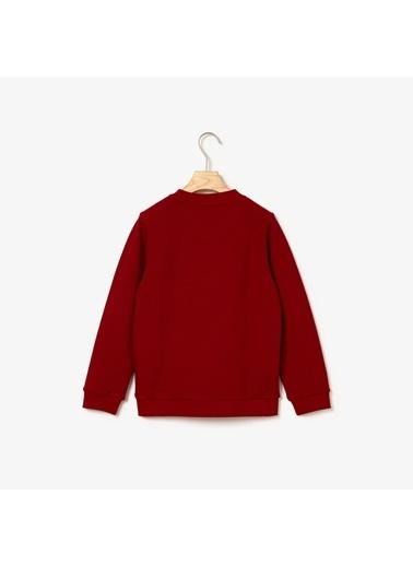 Lacoste Erkek Çocuk  Sweatshirt SJ8130.476 Lacivert